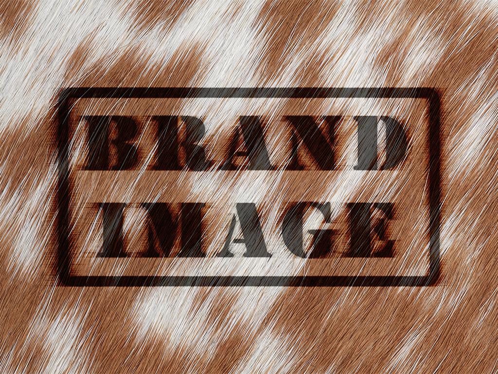 logo design brand management corporate identity design consultants
