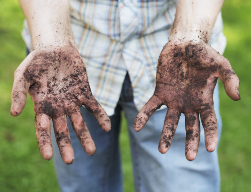 Get an agency with dirt on its hands